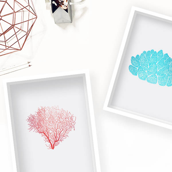 design studio la forma obraz koraly